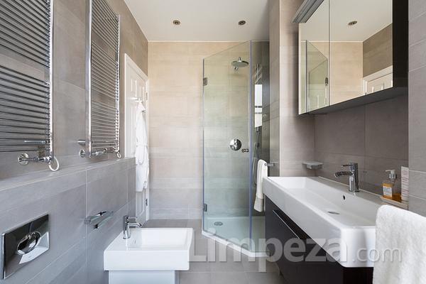 Técnicas para limpar o banheiro em 6 passos