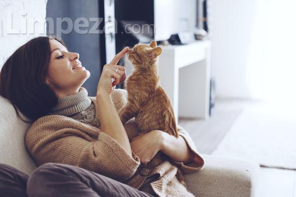 Animalzinho em casa? Veja como cuidar do tapete