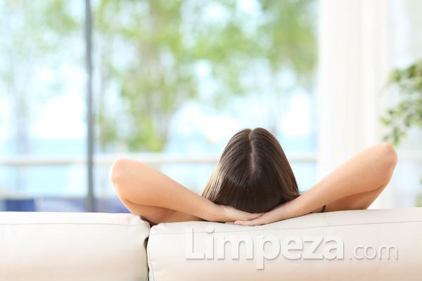Como purificar o ar da sua casa